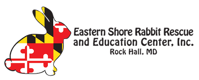 Eastern Shore Rabbit Rescue and Education Center