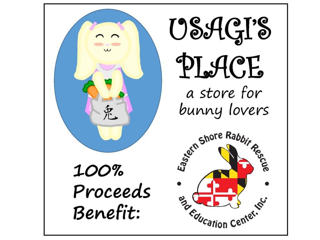 Usagi Store Flyer